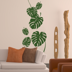 Sticker Philodendron