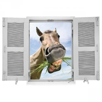 sticker cheval humouristique