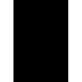 Zorro et son cheval
